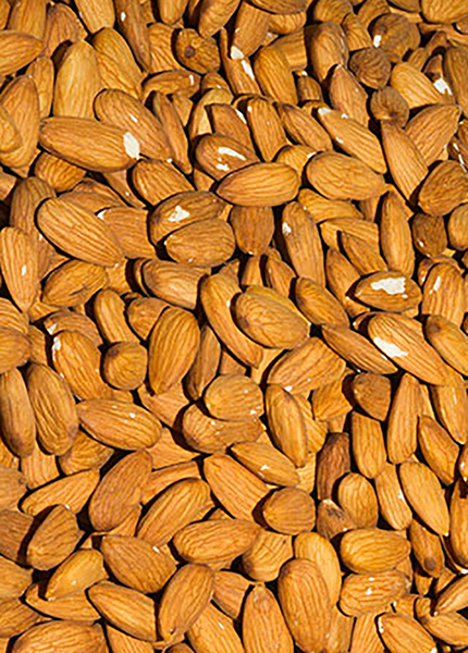 Pesticide Free Natural Almonds Chipped & Broken 12.5kg