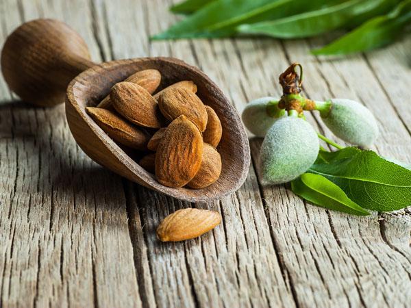 Australian almonds